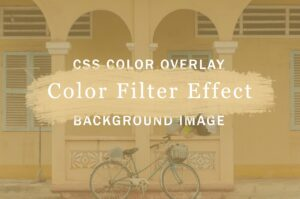 background-image-color-overlay-color-filter-effect-with-css-feature