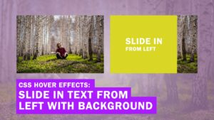 CSS Image Hover Effects: Slide in Text from the Left with Background (Quick Tutorial)